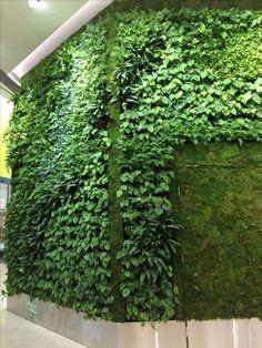 Green plants on the wall at shopping center in Helsinki  So pretty#helsinki #finland #myhelsinki