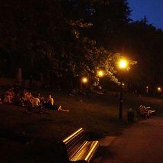 Summer night picnic, Lovz my city