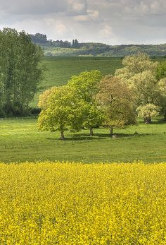 Paysage de #Lorraine by laurent jung, via Flickr