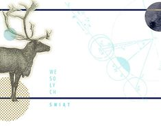 New Work, Moose Art, Christmas Cards, Behance, Photoshop, Profile, Graphic Design, Gallery, Creative