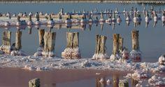 Соленое озеро, соль, столбики