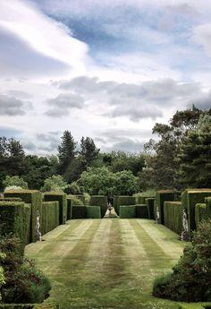 Strange topiary garden.  Kinda creepy