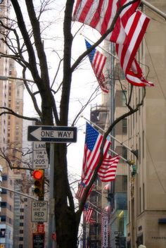 New York, Signs, Flags, Direction, Traffic Lights, Street, Buildings, Trees, Colour, Red, Blue, Wall Art by PhotosbyAnnaMarie on Etsy https://www.etsy.com/listing/236846773/new-york-signs-flags-direction-traffic