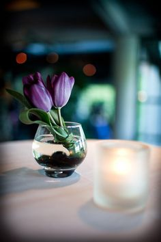 Purple Tulips, small simple for table settings.