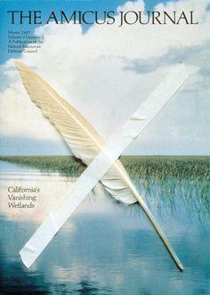 The Amicus Journal, California's Vanishing Wetlands