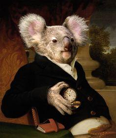 Photoshop Design by sugarcane #photoshop #renaissance #koala #portrait #montage #designcrowd #art #painting