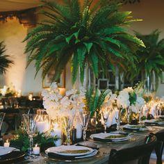Tropical Wedding Centerpieces, Wedding Reception Decorations, Wedding Themes, Wedding Venues, Fern Wedding, Wedding Flowers, Formal Wedding, Centrepieces, Centerpieces