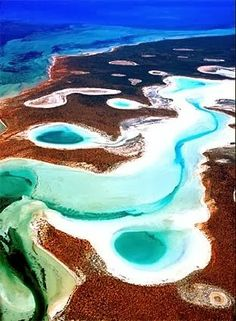 Shark Bay, Australia - Explore the World with Travel Nerd Nici, one Country at a Time. http://TravelNerdNici.com