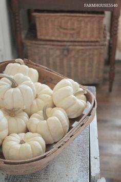 Fall simplicity. Basket full of white pumpkins. Vintage baskets.