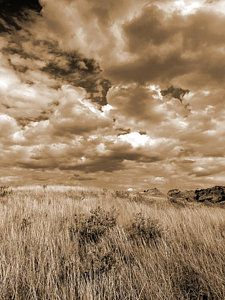 Photograph - Prairie And Sky by Cris Fulton