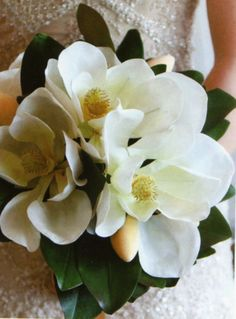 Louisiana's State Flower is the magnolia. How perfect would a magnolia bouquet be for a Baton Rouge wedding? Magnolia Bouquet, Magnolia Wedding Bouquets, Floral Wedding, Wedding Flowers, Bouquet Images, Sweet Magnolia, Gardenias, Bride Bouquets, Here Comes The Bride