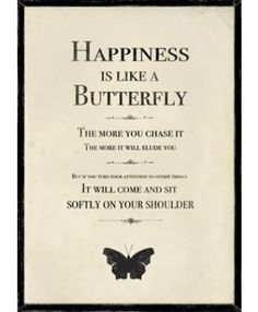 Happiness is Like a butterfly, the more you chase it, the more it will elude you.