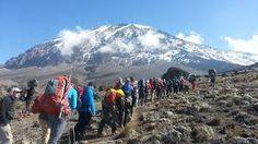 Guidebook To Mount Kenya And Kilimanjaro