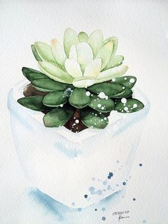 Ideas for succulent art inspiration watercolor painting Botanical Illustration, Watercolor Illustration, Watercolour Painting, Painting & Drawing, Watercolours, Watercolor Succulents, Watercolor Flowers, Succulents Art, Drawing Flowers