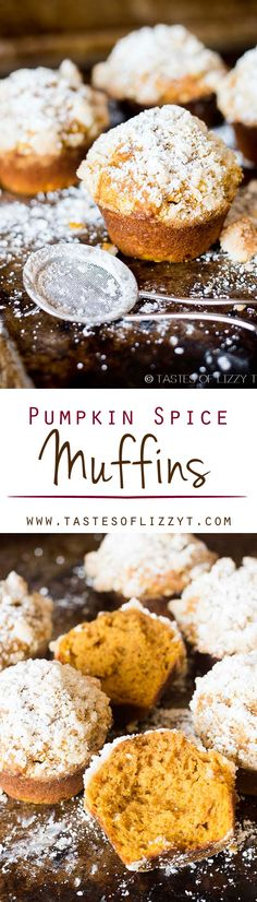 PUMPKIN SPICE MUFFINS I on MyRecipeMagic.com. This pumpkin spice muffin is lightly spiced, soft and moist. The streusel and powdered sugar on top adds a hint of sweetness to each bite.