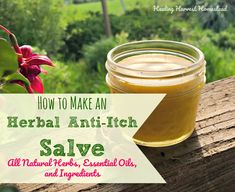 How to Make an Herbal Anti-Itch Salve or Balm (Great for Bug Bites; Dry Itchy Skin; Allergic Reactions; & More)