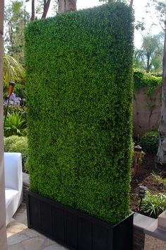 Beautiful Backyard Garden Design and Landscape Ideas Vetical Gardens A vertical garden can be developed reasonably with garden netting as well as a few of your favorite climbing plants. Do It Yourself Projects - Develop a Do It Yourself Outdoor Li Artificial Hedges, Artificial Plant Wall, Artificial Flowers, Artificial Grass Ideas, Fake Grass, Artificial Boxwood, Backyard Garden Design, Backyard Landscaping, Terrace Design