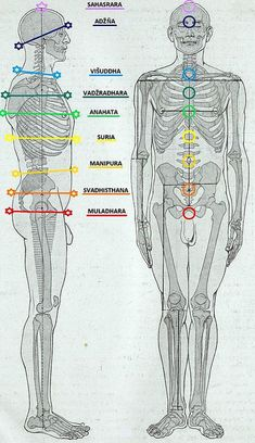 Chakra Locations, Spiritual Power, Subconscious Mind, Plexus Products, Mantra, Human Body, Karma, Spirituality, Aesthetic Photo