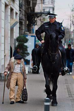 Why horses are imposing.Bucharest.Romania