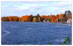 Bala Muskoka in Fall River, Fall, Outdoor, Autumn, Outdoors, Outdoor Games, Outdoor Living, Rivers