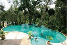 Swimming pool at The Windflower Coorg, Karnataka, India