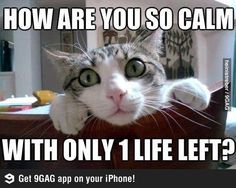 Only 1 life?!