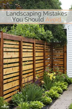 Exterior:Gorgeous Privacy Fence Ideas For Windy Areas Also Cheap Privacy Fence Ideas For Backyard Privacy Fence Ideas To Consider Applying In Your Residence Backyard Fences, Garden Fencing, Backyard Landscaping, Garden Privacy, Patio Fence, Privacy Plants, Fenced In Backyard Ideas, Privacy Trellis, Garden Shrubs