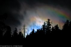 Trees, Moonbow, Clouds