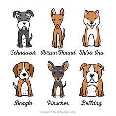 Surtido de perros con seis razas diferentes