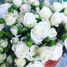 Popular Flowers, All Flowers, Fresh Flowers, Wedding Flowers, White Spray Roses, Wholesale Roses, Star Of Bethlehem, Seeded Eucalyptus, Manzanita