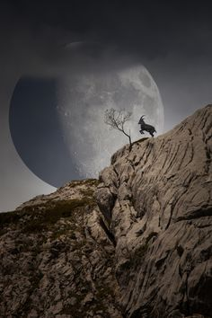 Two dialogues, separated by DNA - The reality is only one possibility of the imagination. Photography by Jeremy Brun full moon goat mountain
