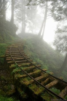 old-train-track-in-the-fog.jpg  An abandoned railway runs through a clouded forest on Tai Ping Shan Mountain, a popular wilderness area in by Scot