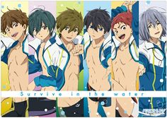 The main boys of Free! All Anime, Anime Love, Anime Guys, Musaigen No Phantom World, Makoto, Swimming Anime, Splash Free, Free Eternal Summer, Free Iwatobi Swim Club