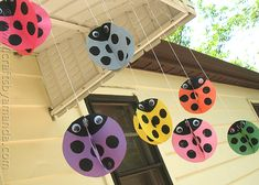 Twirling ladybugs. I'm going to make these out of plastic milk jugs and hang them to scare the deer away