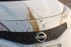 Pin by aaron soetaert on my car wash meet pinterest car wash the end of car washes meet the worlds first self cleaning vehicle can solutioingenieria Images