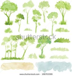 Watercolor style vector illustration of a collection of trees, shrubs, and grasses, isolated on white.