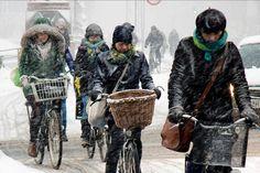 Travel to-do list: ride the bike highway in Copenhagen.