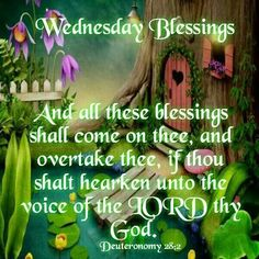 Wednesday Blessings days days of the week good morning wednesday hump day graphic hump day camel happy wednesday good morning wednesday wednesday quote