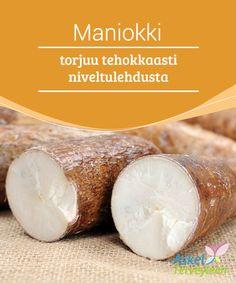 Maniokki torjuu tehokkaasti niveltulehdusta   Maniokki eli kassava #päivittäin syötynä voi lievittää #niveltulehduksen #aiheuttamaa kipua ja jäykkyyttä.  #Luontaishoidot