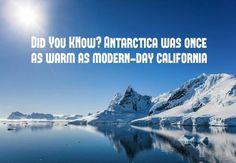 #FunFactFriday #Antarctica