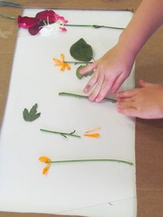 Take flowers apart w/ tweezers and put them back together by sticking on contact paper while talking about the different parts
