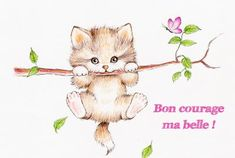 Bon Courage, Bob Hairstyles For Thick, Maternity Photography Poses, Happy Birthday Greetings, Morning Images, Blogger Themes, Cute Cards, Girl Birthday, Teddy Bear