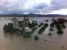 Vjosa del nga shtrati, përmbytje masive - Foto - Top Channel
