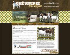 Chèvrerie Du Biquet is a goat farm in Warwick, Québec, Canada. Brown, green and white website design.