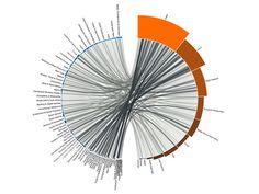 visualcomplexity.com | World Economic Forum Visualization