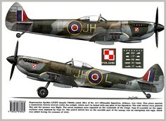 Spitfire L.F.XVI 317 SQ