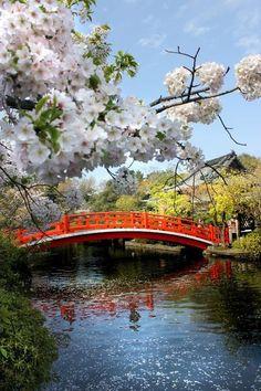 Houjoubashi, Shinsen-en (near Nijo Station), Kyoto, Japan, photograph by Melinda Antaramian. Places Around The World, Around The Worlds, Places To Travel, Places To Go, Go To Japan, Japan Japan, Okinawa Japan, Japan Sakura, Visit Japan