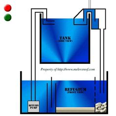 Great site for info on sump tanks and how to set one up for your tank
