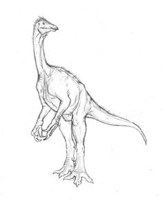 Jurassic Park Carnotaurus Coloring Page From Saurischian Dinosaurs