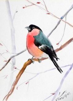 Bullfinch original watercolor painting 12 X 9 in by ORIGINALONLY, $24.00